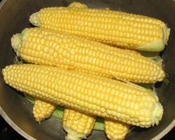 Если вы любите вареную кукурузу